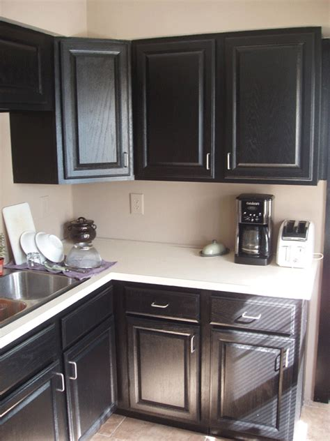 Pressed Wood Cabinets by Colortherapy Simple Painting Projects Black Cabinets