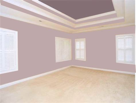 Painting Ceiling Color by What Color Should I Paint The Tray Ceiling In Bedroom