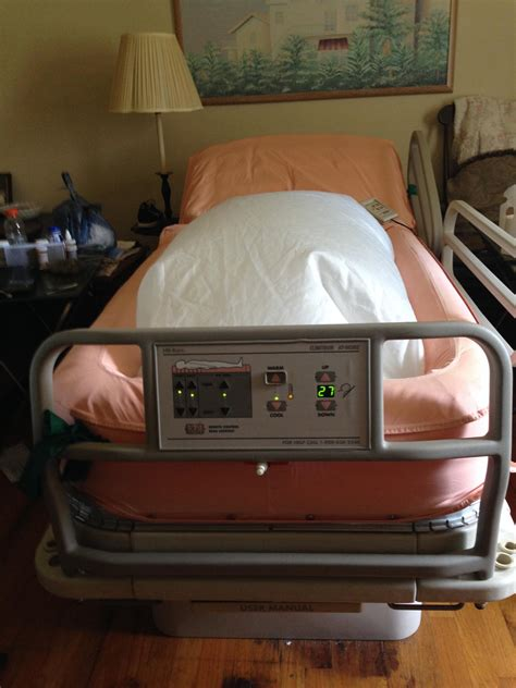 clinitron bed clinitron at home bed for sale