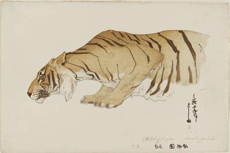 sketchbook of a zoo yoshida hiroshi sketch of tiger tora from the series
