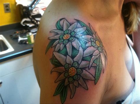 edelweiss tattoo edelweiss the flowers the o