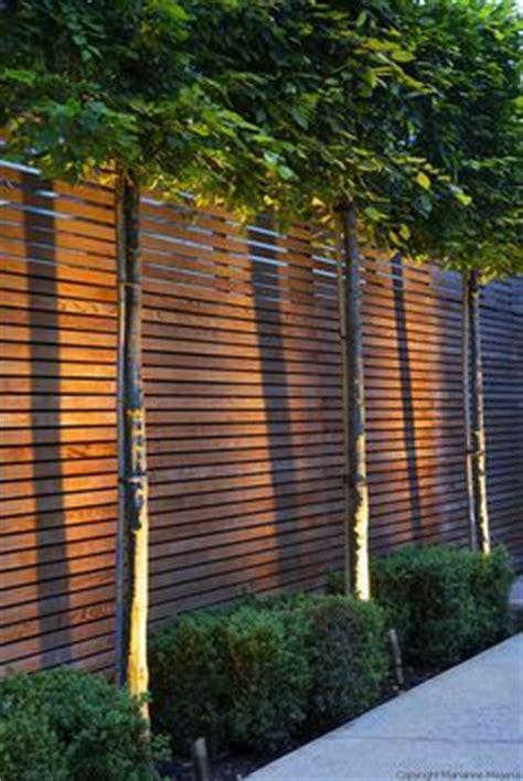 Pflanzen Im Haus 4508 by 33 Besten Vorgarten Nordseite Bilder Auf