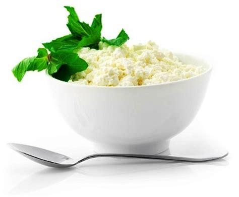 Does All Cottage Cheese Probiotics by Boost Your Family S Immunity True Health Magazine