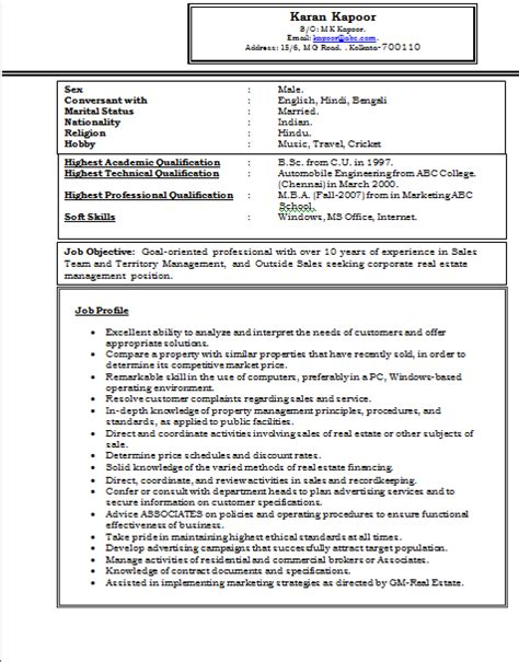 Sample Resume For Experienced It Professional