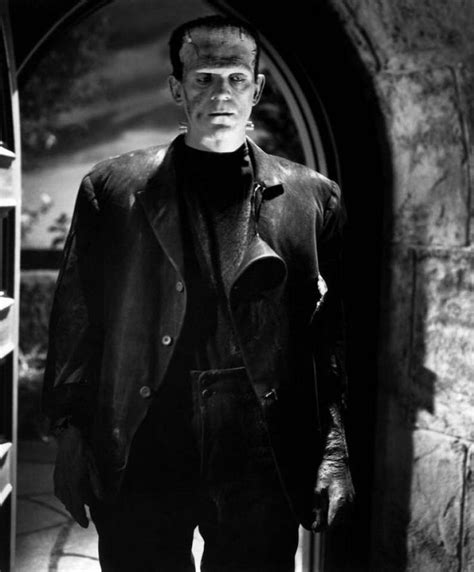 themes of beauty in frankenstein 17 best images about universal monsters on pinterest