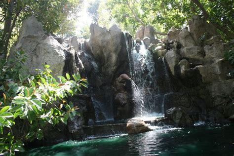 beautiful jungle cruise photo