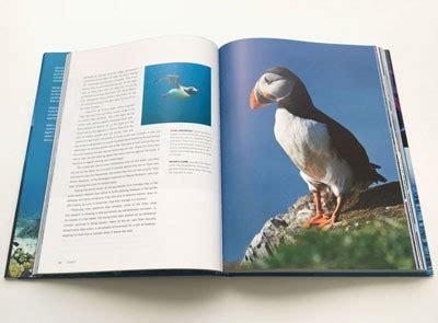 blue planet ii a new world of depths books blue planet ii by honeyborne brownlow