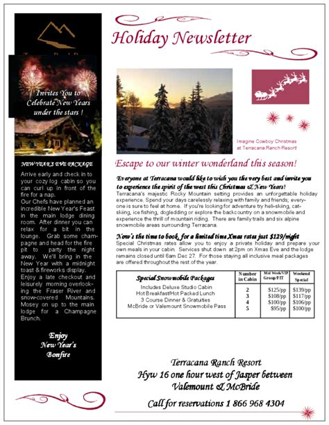 holiday newsletter terracana free download