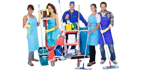 Carpet Upholstery Cleaner Carpet And Upholstery Cleaning Service By Roimanholder On