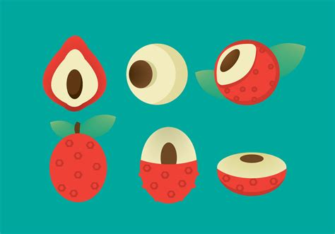 lychee fruit drawing free lychee vector icon download free vector art stock