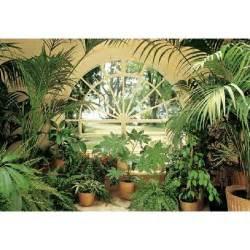 fototapete wintergarten poster mural g 233 ant jardin d hiver 366 x 254 cm achat
