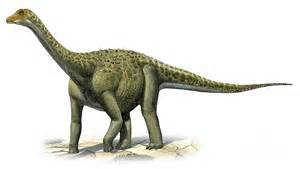 Dino Images Titanosaurus Pictures Facts The Dinosaur Database