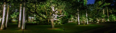 Miami Landscape Lighting Miami Landscape Lighting Miami Fl Us 33129