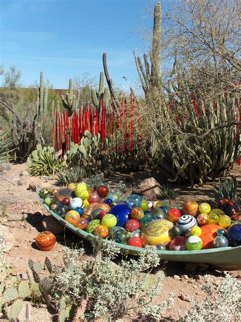 Botanical Gardens In Arizona 17 Best Images About Desert Botanical Garden With Chihuly Glass On