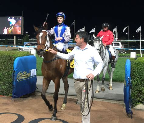 filly stall tyabb bred filly wins gallagher bassett tbv 3