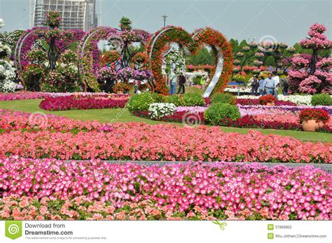 florist jobs in dubai dubai miracle garden in the uae editorial photography