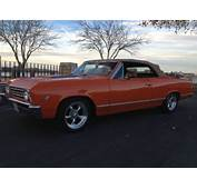 Purchase New 1967 Chevrolet Chevelle / Malibu Convertible