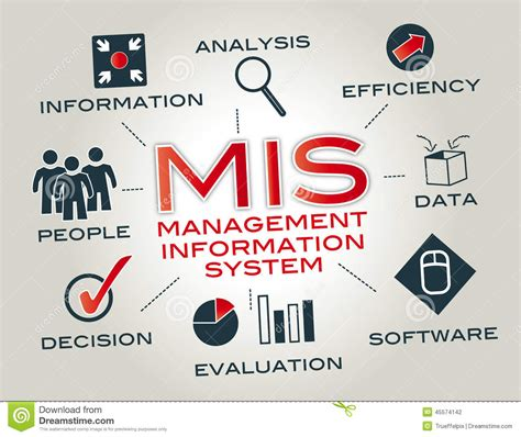 Business Web Design Homepage by Management Information System Mis Stock Illustration