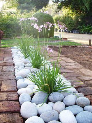 jardines y paisajismo tipos de plantas para dise 241 ar tu jard 237 n y paisajismo