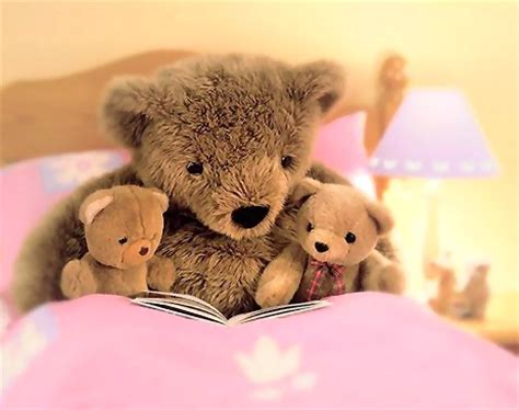 teddy bear bed teddy bear free stock photo teddy bears in a pink bed