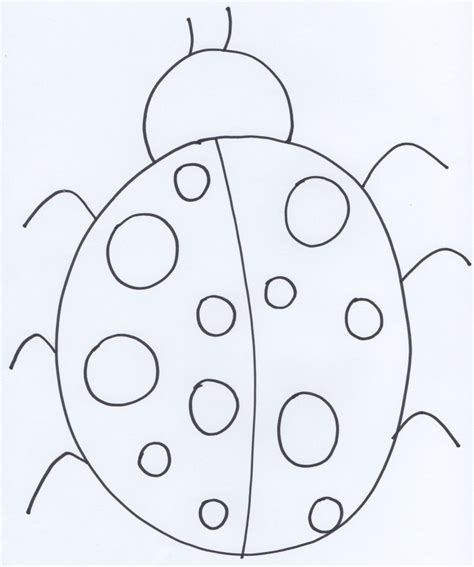 ladybug life cycle coloring page ladybug life cycle page coloring pages