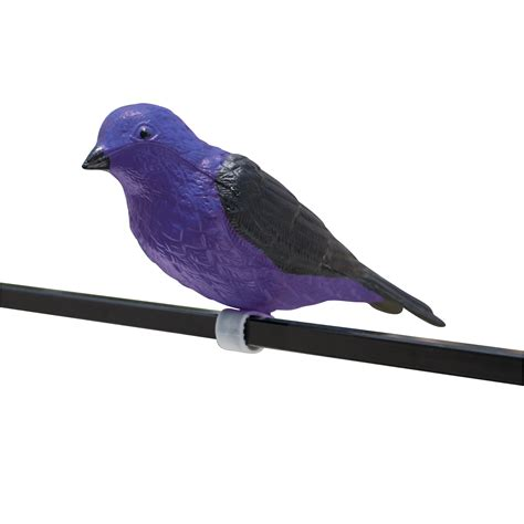 pmd purple martin decoy purple martin s k