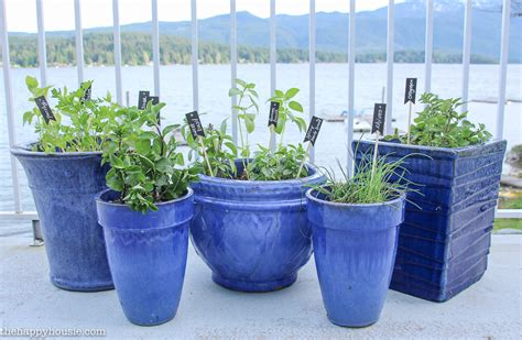 kitchen herb pots easy diy kitchen herb garden in deck pots the happy housie