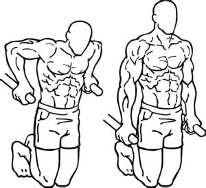 Assisted Bench Press Machine Dip Exercise Wikipedia