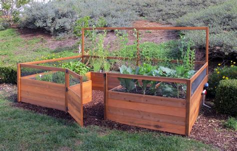 raised vegetable garden beds raised bed vegetable garden layout dog breeds picture