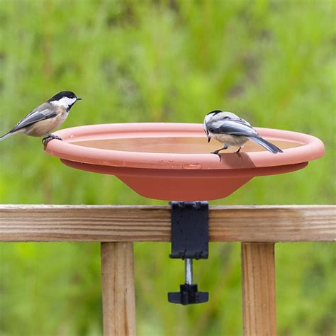 table top bird bath