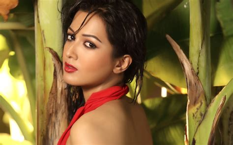 cute wallpapers hd actress india info desk news and views on current affairs and