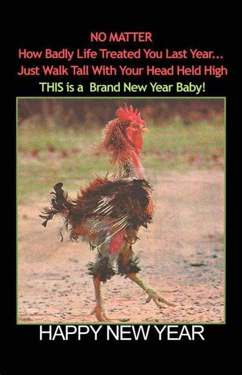 humorous new year images new year wishes quotes pictures and resolutions 45 pics