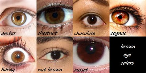 realrandomsam smaugnussen goddessofsax how to write brown characters and finally i an actual eye color not just quot brown quot tips tricks writing