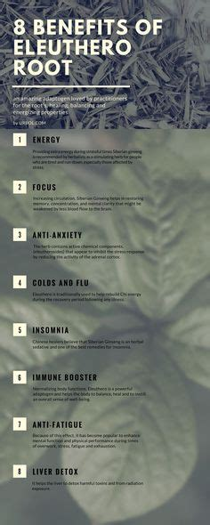Ginseng Detox Benefits by 1000 Images About Herbology On Herbs