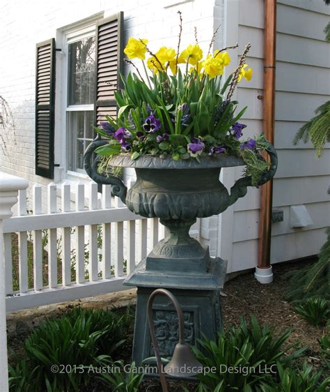 landscape around double patio pinteres spring planter with yellow daffodils pussy willow and