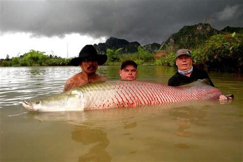 film thailand ikan monster dunia pancing dan ikan jurassic fishing park