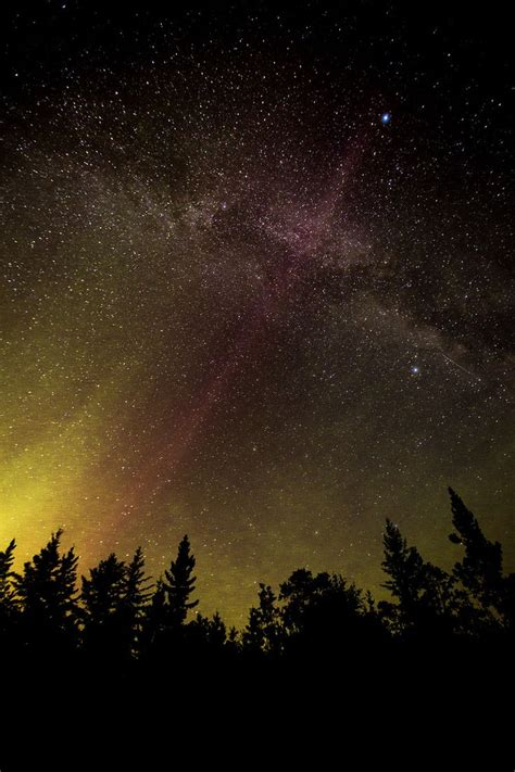 46 Best Images About Land Of Living Skies On Pinterest National Loons Lights