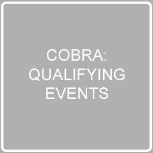 cobra: qualifying events – 24hourflex