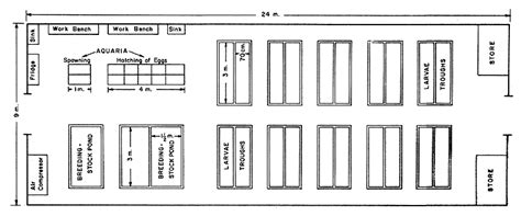 hatchery layout plan proceedings of the world scientific conference on the