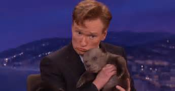Conan Obrien Is Shut Out Of A House Tour by Conan O Brien Falls In With Adorable Baby Cub