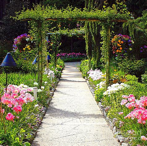 garden of flowers flower garden weneedfun