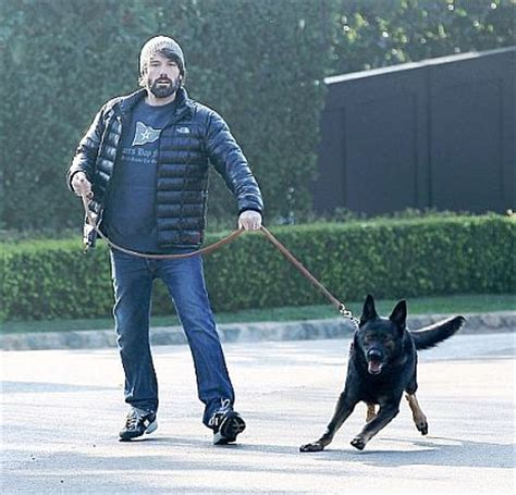 leash training secrets mygermanshepherdorg