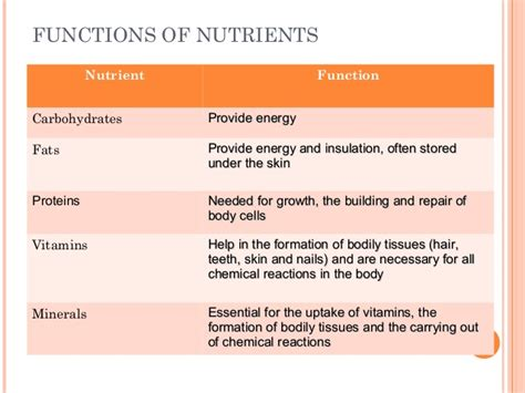 carbohydrates nutrient function nutrition
