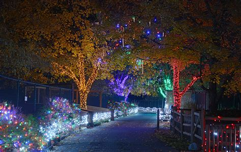 pictures lehigh valley zoo s winter light spectacular