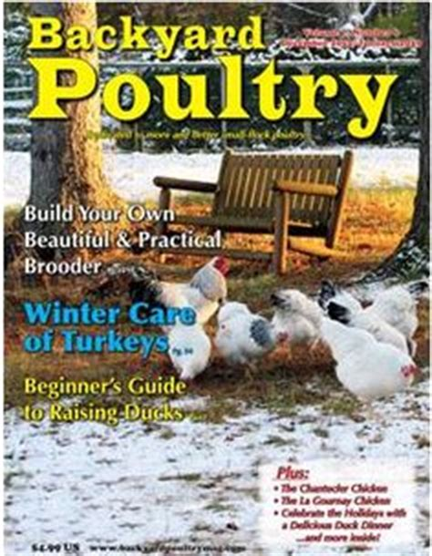 backyard chicken magazine 1000 images about backyard poultry covers on pinterest