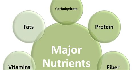 8 Essential Vitamins For by Fitness Pro Protein What Why And How One Of The 7