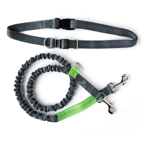 best leash for running top 6 best running leashes in 2018 dogstruggles