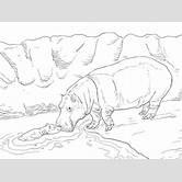 cute-baby-whale-drawings