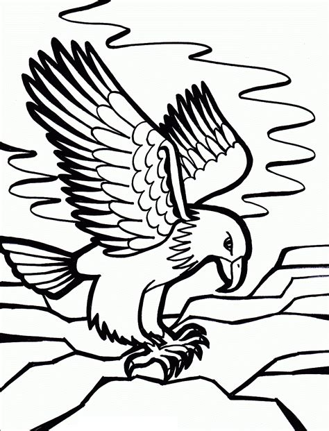 printable coloring pages eagles free printable bald eagle coloring pages for