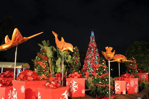 seaworld san diego christmas celebration is full of